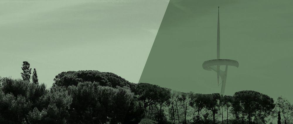 Consell del Parc de Montjuïc