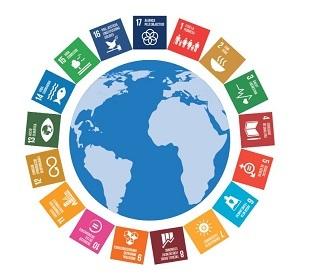 El llenguatge dels ODS dins la gestió de B:SM