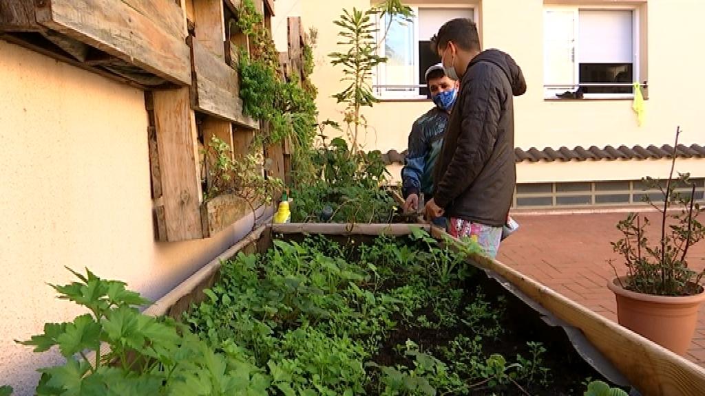 El JAM Hostel s'ha convertit en una llar per a joves refugiats des de l'esclat de la pandèmia