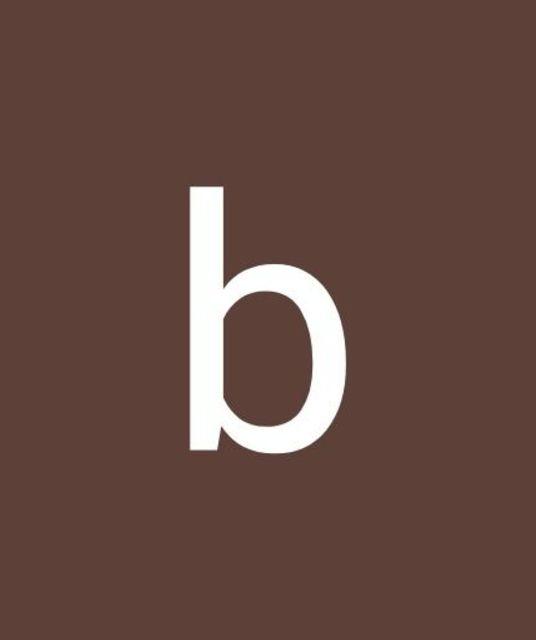 avatar bbarreiro2