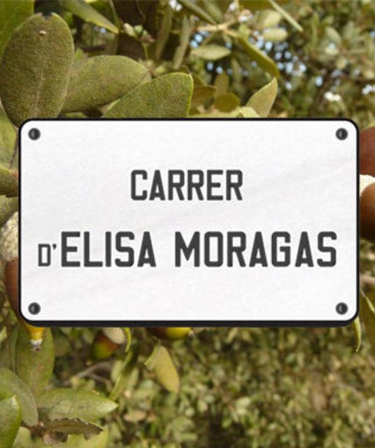 avatar Comissió Promotora Carrer Elisa Moragas